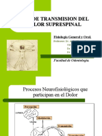 Sistema de suppression del dolor pdf file