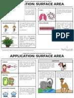 DG1 Application Surface Area Concepts 1sk