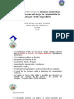 Ciudadela_ArrietaRios_2018