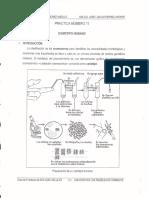 Practicas_tercera_uinidad.pdf