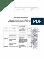 3 Directiva para el ejercicio de la función inspectiva en materia de SST(1).pdf
