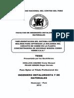 TIMM_33 tesis smcv.pdf