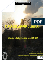 Plagas de la Caña de azúcar pdf.pdf