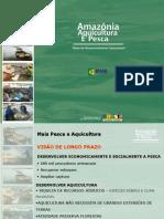 MINISTRO DA AQUICULTURA E PESCA - Plano Amazonia Sustentavel de Aquicultura e Pescarevisao Sheila