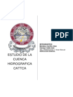 ESTUDIO DE LA CUENCA HIDROGRAFIC DEL RIO VILCANOTA 3.docx