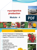 Session 4-Tomato, SPepper, Brinjal.pdf