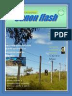 Revista Fotografica Digital Cannon Flash