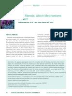 Liver Fibrosis- Which Mechanisms Matter?