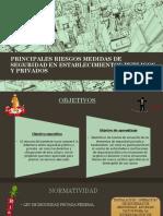 PRINCIPALES RIESGOS MEDIDAS DE SEGURIDAD EN ESTABLECIMIENTOS PUBLICOS.pptx
