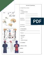 Nclex Neuro