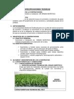 TDR 2 DE GRASS SINTETICOOOOOOO.docx