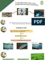 Proyecto de Inversion Publica Fase Formulacion