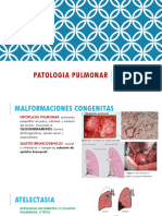 2da Teoria Patologia Pulmonar