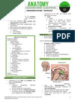 [18] Endocrine System