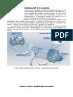 Livro Virtual de Loanda