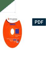 4.2) PLANTILLA CD.doc