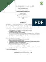 exposicion incidencia.pdf.docx
