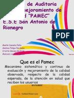 diapositivas pamec