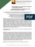 Artigo Análise das Manifestações Patológicas nas Torres Sineiras da Igreja de São Benedito, Teresina-PI(ALTERADO).pdf