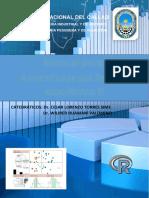 MANUAL R.pdf