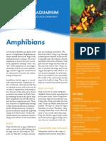 Amphibians EdFactSheet High