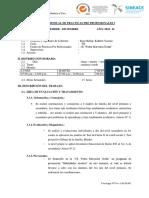_INFORME_MENSUAL_DE_PPP_I.docx