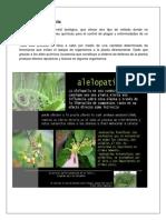 alelopatia2