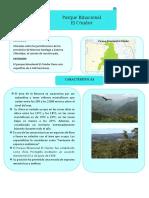 Parque Binacional El Condor