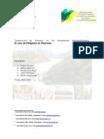 Informe CFG Movimientos Medioambientales