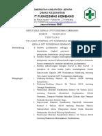 SK Tim Audit Internal 2019 Terbaru