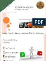 Mercado y Comercialización de Hongos Comestibles