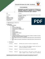 Directiva Final de Proyectos 12 de OCTUBRE 2012