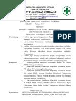 SK Kebijakan Perencanaan PKM Bab 1 2019