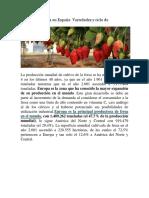 informacion 1.docx