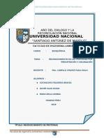 Informe Final de Proteinas Bioquimica