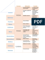 carbohidratos zootecnia