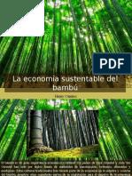 Henry Camino - La Economía Sustentable Del Bambú