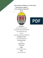 EXPOSICIÓN QI-233.docx