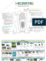 Consulta de La Lista Roja de Fauna de La UICN