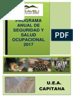 Prog. Anual de Seg. Salud Trabajo 2017 Caraveli