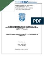 CATALOGO MACROALGAS.pdf