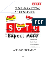 Project report on marketing planning strategy by Sotc