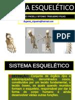 2º Sistema Esquelético.ppt_1535764176930