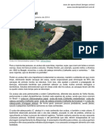 urubusbrasileiros.pdf