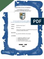 INFORME SEDA HUANUCO.docx