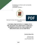 UCF8855_01 SBR.pdf