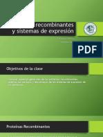 Clase 6. ProteÃ_nas recombinantes y sistemas de expresión
