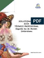 2015 Solucionario Guía 17 TC Segunda Ley de Mendel Dihibridismo