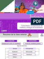 Clase 24 TC Fotosíntesis Incorporación de Materia y Energía Al Ecosistema