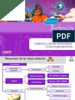 Clase 25 TC Cadenas y Tramas Alimentarias. Ciclos Biogeoquímicos 2015